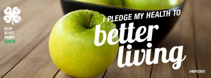 Image of apples with the saying I pleage my heart to better living.