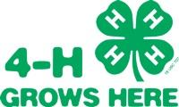 4-H grows here logo.