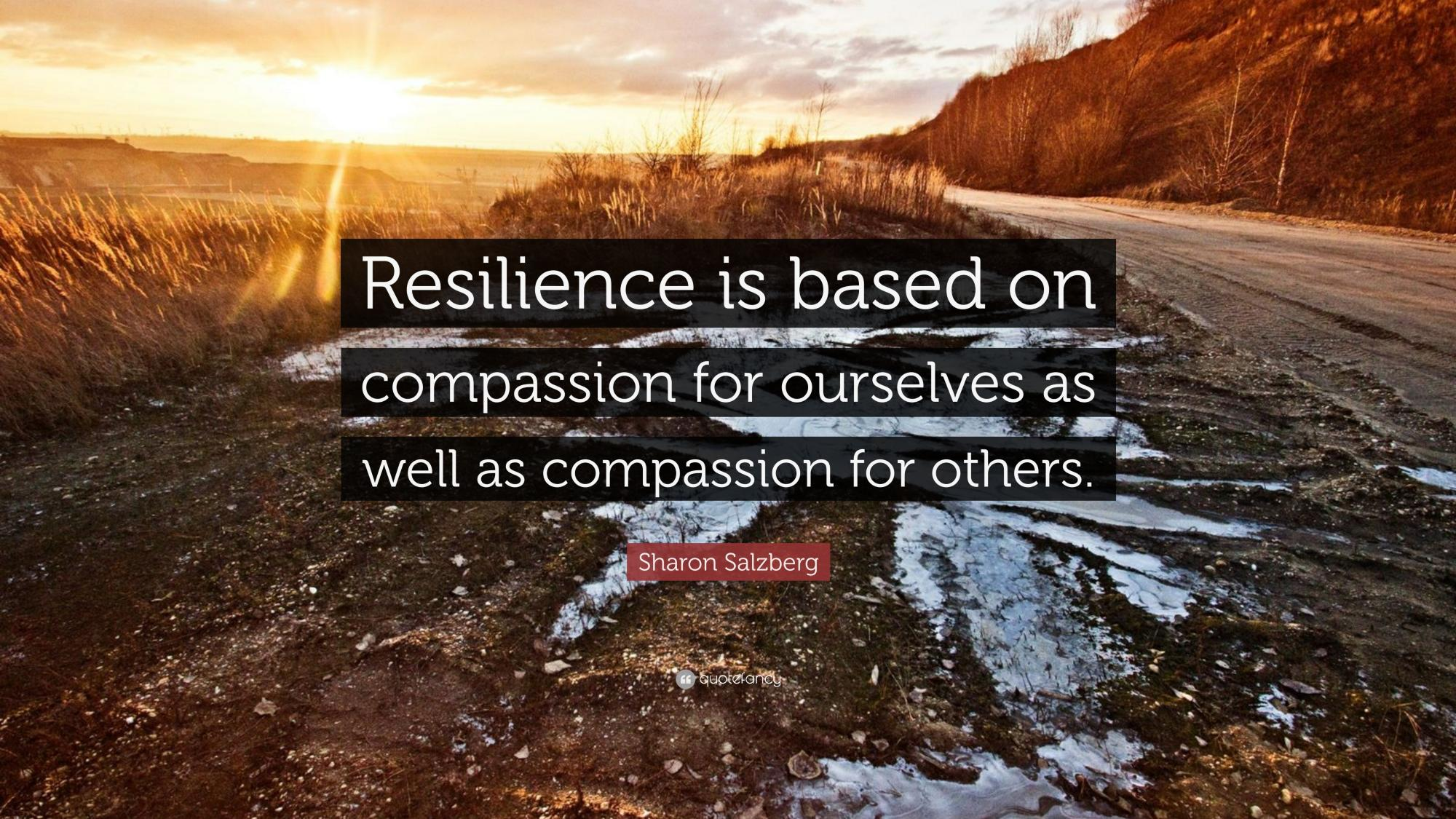 Resiliency quote.