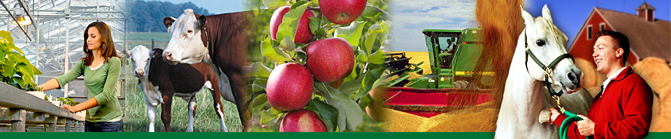 Images of agriculture.