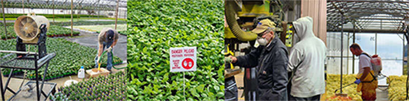 Images of workers applying pesticides.