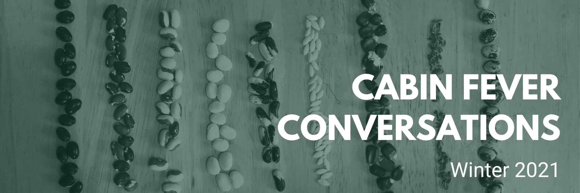 Cabin Fever Conversations Winter 2021