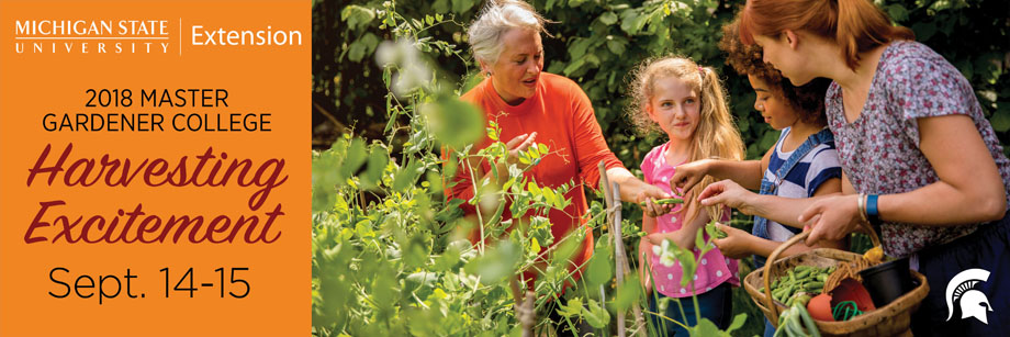 Image showing multi-generation gardeners harvesting vegetables