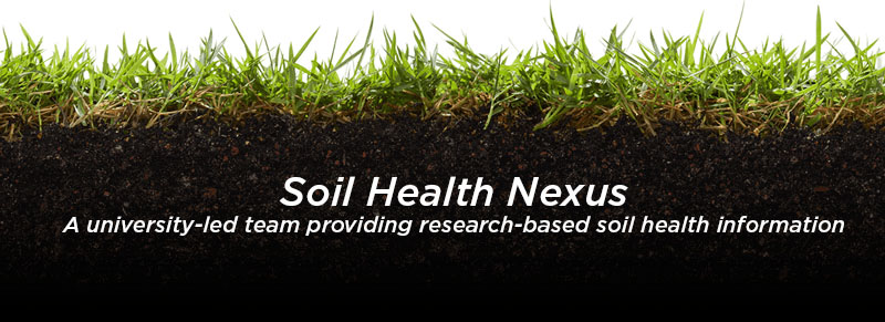 soil health nexus image with wheat and soil